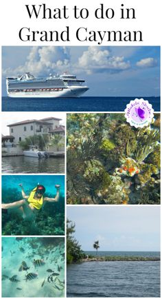 What to do in Grand Cayman #travel