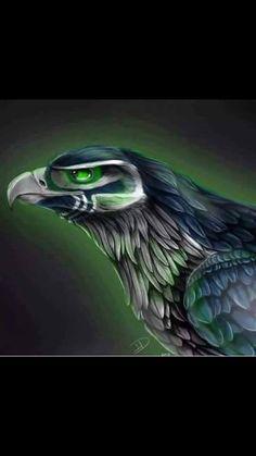 Eye of the Hawk!!