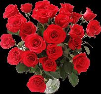 Happy Rose Day Quotes Wishes, Rose Day 2020 Images Wallpapers Hug Day Quotes, Wish Quotes, Happy Hug Day, Rose Images, Day Wishes, Special Day, Quote Of The Day, Wallpaper, Flowers