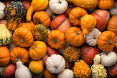 #Pumpkins -  TMJ-Friendly Foods for the Fall  - There are lots of fall food favorites that fit into a TMJ-friendly #diet. Here's a look at 3 things to add to the #menu this #fall and tips on preparing them. #TMD #TMJ #temporomandibularjointdisorder #temporomandibular #jointdisorder