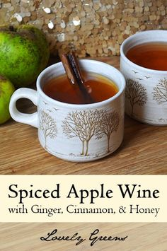 Hot Spiced Apple Wine with Ginger, Cinnamon and Honey - Warm yourself and loved ones up with this seasonal drink! #holidays