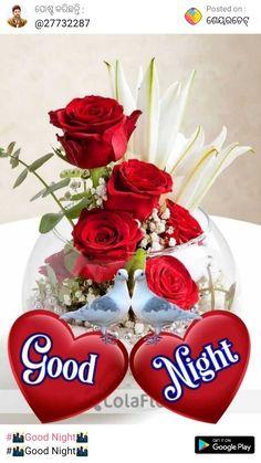 Good Morning Beautiful Pictures, Photos Of Good Night, Romantic Good Night Image, Good Night Love Images, Good Night Gif, Good Night Messages, Night Pictures, Gif Pictures, Rose Images