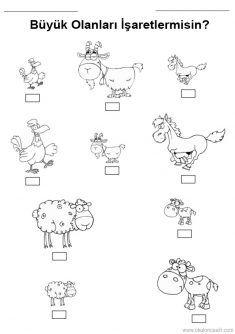 21 En Iyi Hayvanlar Goruntusu Hayvanlar Faaliyetler Ve Okul Oncesi
