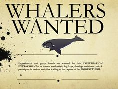 Whaling: Why Go After Minnows When You Can Catch a Big Phish? - Social-Engineer.Com - Professional Social Engineering Training and Services