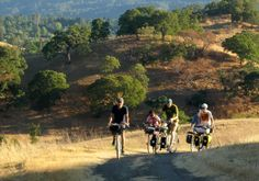 Overnight camping trips by bike.