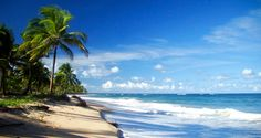 Brasil...  Praia De Taipu De Fora, Península De Maraú, Bahia: Se você curte mergulhar esse é o seu lugar! Repletas de piscinas naturais, a Praia de Taipu é digna de cena de cinema. A areia branca e os coqueirais nos 7 km de extensão da praia completam o cenário paradisíaco.