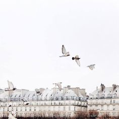 Paris is probably the most popular city in the world and people go here for more vacations mostly to enjoy its culture, history and architecture. Paris is Paris France, Paris Paris, Paris 2015, Oh The Places You'll Go, Places To Visit, Tuileries Paris, Metro Paris, Paris By Night, My Little Paris