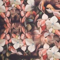 Faded Floral Digitally Printed Stretch Neoprene Fabric by the Yard | Mood Fabrics