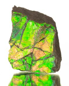 bijoux-et-mineraux:  Ammolite - Canada