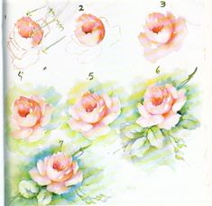 Image result for CHINA-PAINTING-STUDY-ROSE-1-CATHERINE-WOODS-4-PAGES