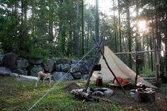 愛犬銀とのオールドキャンプ | 写風人の薪焚き日和
