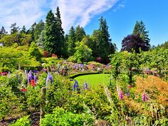Butchart Gardens, British Columbia; Photo by Clive Hicks, Taken on June 22, 2013.