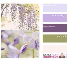 paleta de colores fiolet
