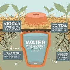 How to make your garden drought proof, using unglazed clay pots. - The Permaculture Research Institute Haus&Co How to make your garden drought proof, using unglazed clay pots. - The Permaculture Research Institute Pots D'argile, Clay Pots, Organic Gardening, Gardening Tips, Vegetable Gardening, Urban Gardening, Flower Gardening, Permaculture Garden, Gardening Gloves