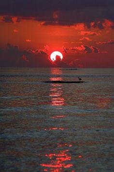 Sunrise to Sunset/beautiful sky