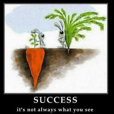 Success: What is it?