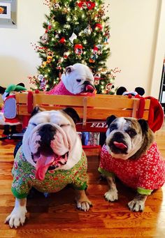 ❤ WOW - A great NEW Wagon from Santa! ❤ Posted on Buonanotte