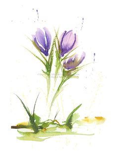 Sized at 8.5 x 11. This is a print of my original watercolor Crocus Study painting. Printed with Epson Ultra Chrome K3 pigment inks which are
