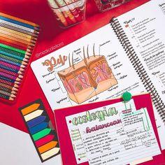 Study Ideas, Lettering Tutorial, Note Taking, College Life, Beautiful Words, Biology, Resume, Chloe, University