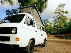 Tenerife dice presente!! Sire y Jero con su T3 también se apuntan al club!! Bienvenidos FurgoLovers!  FurgoClubVw.com  #vw #volkswagen #furgolover #minibus #combi #bulli #vwT1 #vwT2 #vwT3 #vwT4 #vwT5 #vwT6 #multivan #vanlife #camper #furgoclubvw #campervan #vwbus #vwcamper #van #vwlove #vwvan #hippievan #enfurgomolamas #vwcampervan #campervw #tenerife #furgovw #nosinmifurgo #camperlife