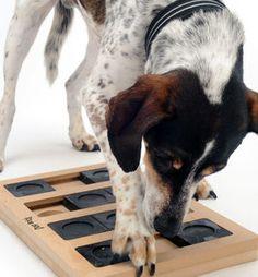 The Ultimate Interactive Brain Teaser Launching Nina Ottosson Dog Activity Toys