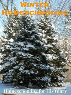 Homeschooling for His Glory: Winter Homeschooling