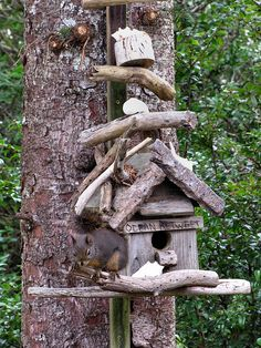 This is a bird house not a squirrel house!