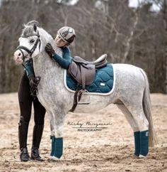 Красивые Лошади, Лошадиная Упряжь, Любовь Лошадей, Фотографии Лошадей, Фотография, Фотографии Лошадей, Мода Для Всадников