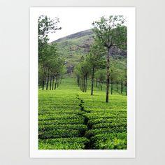 Munnar Tea Plantation, Kerala, India Art Print by Strongsoutherly - $16.00