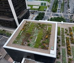 Orange roofing, residing roofer, vegetated roofs, ecoroofs — whatever it is that you desire to dial these items. Landscape Elements, Landscape Architecture, Landscape Design, Urban Agriculture, Urban Farming, Culture D'herbes, Green Roof Benefits, Roofing Options, Living Roofs