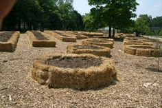 A different twist on raised beds and strawbale gardening. A different twist on raised beds and strawbale gardening. Raised Garden, Plants, Garden, Straw Bale Gardening, Hay Bale Gardening, Lawn And Garden, Veggie Garden, Strawbale Gardening, Farm Gardens