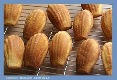 This recipe for Lemon Madeleines gives you another delicious way to enjoy your daily serving of oat bran in the Cruise Phase of the Dukan Diet. Points Plus Recipes, No Carb Recipes, Lemon Recipes, Ducan Diet Recipes, Macarons, Wheat Belly Recipes, Biscuits, Low Carb Biscuit, Blood Type Diet