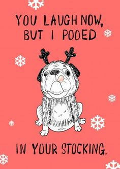 Well he pooed In Your Stocking. Funny Christmas card