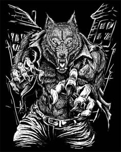 1000 images about lycan project cartel referrence on for Calavera lobo
