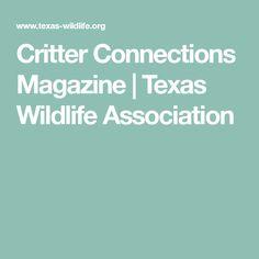Critter Connections Magazine | Texas Wildlife Association