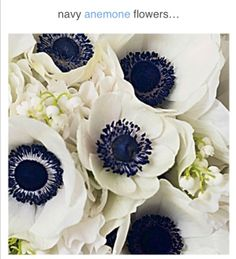 Navy and white flowers to include in the bouquet:)