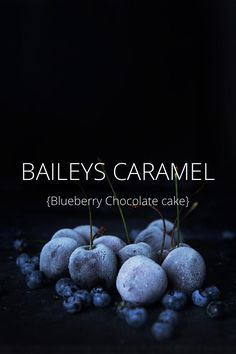 Wie versprochen gibt es heute das Rezept für meinen Blueberry Chocolate Cake mit Baileys Caramel! Vorab auf STELLER. Viel Spaß damit;-)