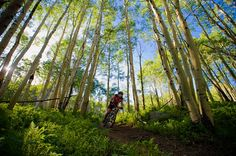 Why do we love Crested Butte? Because we have miles of amazing singletrack surrounding us!
