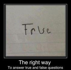 True or False - Karyd