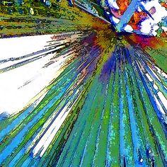 'Palmart' von Dirk h. Wendt bei artflakes.com als Poster oder Kunstdruck $19.41