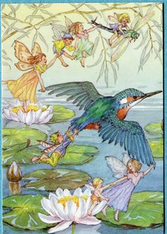 Molly Brett postcard Kingfisher and Fairies