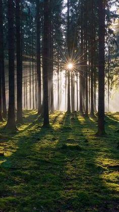 Beautiful Photos Of Nature, Beautiful Nature Wallpaper, Nature Pictures, Amazing Nature, Beautiful Landscapes, Beautiful Places, Beautiful Nature Photography, Aesthetic Photography Nature, Nature Aesthetic