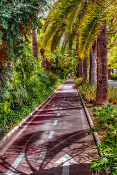 Exotic bicycle track - Malaga city, Spain.