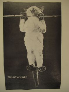 Original Hang in There, Baby Poster in Great Condition!