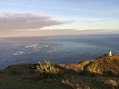 Tasman Pacific cross