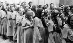 Women prisoners selected for work at Auschwitz-Birkenau, Poland, On arrival these women had their own clothes taken away and replaced by the smock uniform worn in the Nazi concentration camps. Anne Frank, World History, World War Ii, Corrie Ten Boom, Horror, Saga, History Photos, Interesting History, Second World