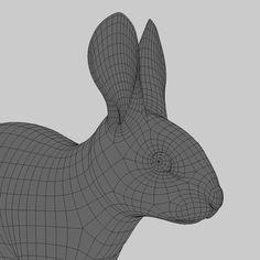 3d model rabbit cream fur animation