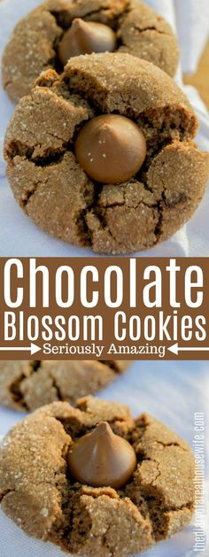 Chocolate on chocolate! These Chocolate Blossom Cookies are a favorite of mine that I am sure you will love also. Chocolate cookie rolled in sugar then topped with a chocolate kiss. Brownie Recipes, Cookie Recipes, Dessert Recipes, Bar Recipes, Cookie Ideas, Drink Recipes, Crinkle Cookies, Spritz Cookies, Xmas Cookies