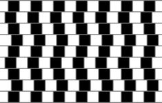 An optical illusion is a type of illusion characterized by visually perceived images that are deceptive or misleading. Information gathered by the eye is interpreted by the brain to give the perception that something is present when it is not. Illusions Mind, Amazing Optical Illusions, Optical Illusion Quilts, Photo Illusion, Illusion Pictures, Op Art, Types Of Illusion, Weird Facts, Random Facts