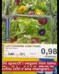 #vegan #vegano #cenmanicomiu #catanisi #catania #sicilian #sicilia #igerscatania #stispacchivegani #instacatania #instact #cataniabedda #mbare